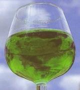 verre de liqueur d'angélique